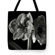 Fancy Amaryllis In Black And White Tote Bag