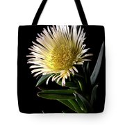 Fancy Ice Plant Tote Bag