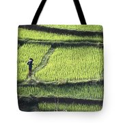 Farmer In Rice Paddy, Elevated View Tote Bag
