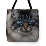 Fat Cats Of Ballard 9 Tote Bag