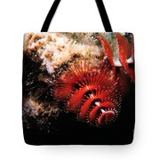 Feather Duster Feeding 2 Tote Bag