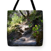 Feather Falls Stairway Tote Bag