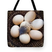 Feathered Eggs Tote Bag