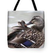 Feathers In Place Tote Bag