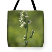 Feathery Reed Canary Grass Vignette Tote Bag