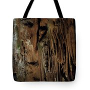 Featured Grotte De Magdaleine In South France Region Ardeche Tote Bag