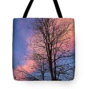 February Sunset Tote Bag