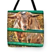 Feed Me Or I Will Eat You Lol Tote Bag
