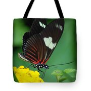Feeding Butterfly Tote Bag