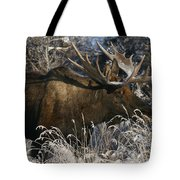 Feeding In The Snow Tote Bag