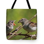 Feeding Time Tote Bag by Bruce J Robinson