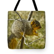 Feeding Tree Squirrel Tote Bag