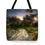 Feeling Over The Weather Tote Bag