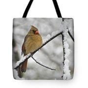 Female Cardinal 3656 Tote Bag