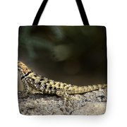 Female Desert Spiny Lizard  Tote Bag