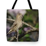 Female Finch Tote Bag