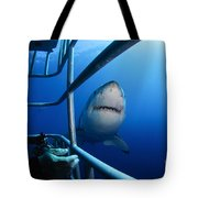 Female Great White And Underwater Tote Bag