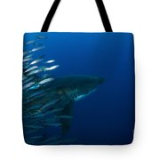 Female Great White Shark With A School Tote Bag