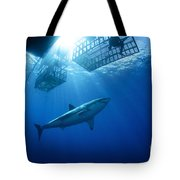 Female Great White With Cages Tote Bag