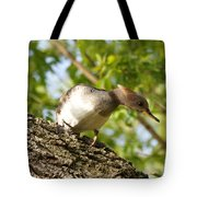 Female Hooded Merganser Tote Bag