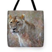 Female Lion Portrait Tote Bag