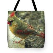 Female Northern Cardinal Tote Bag