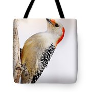 Female Red-bellied Woodpecker 2 Tote Bag