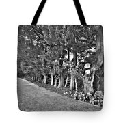 Fence Of Trees Tote Bag