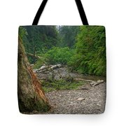 Fern Canyon Trunk Tote Bag