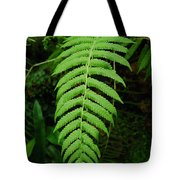 Fern Frond 0576 Tote Bag