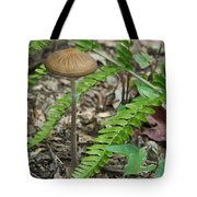 Fern Frond And Mushroom 5 Tote Bag