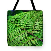 Fern Frond Tote Bag