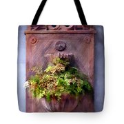 Fern In Antique Wall Planter Tote Bag