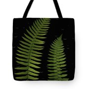 Fern Leaves With Water Droplets Tote Bag