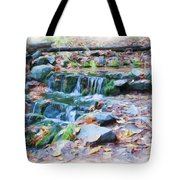 Fern Spring In Autumn Tote Bag