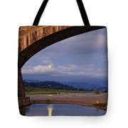 Fernbridge And The Moon Tote Bag