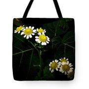 Feverfew In Bloom Tote Bag