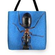 Field Ant Tote Bag