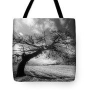 Field At Rest Tote Bag