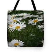 Field Daisies Tote Bag