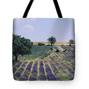 Field Of Lavender. Sault. Vaucluse Tote Bag