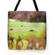 Field Of My Dreams Horses Tote Bag