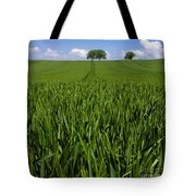 Field Of Wheat. Auvergne. France. Europe Tote Bag
