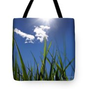 Field Of Wheat In Limagne. Auvergne. France. Europe Tote Bag