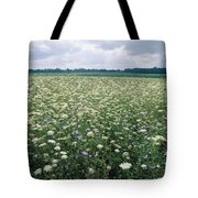 Field Of Wildflowers, Montezuma Tote Bag