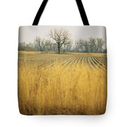Fields At The Lillian Annette Rowe Bird Tote Bag