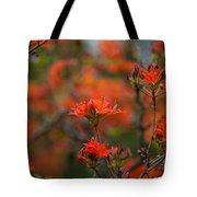 Fiery Spring Tote Bag