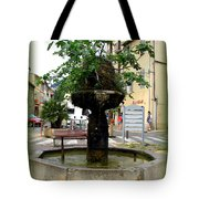 Fig Tree Fountain In Cassis Tote Bag