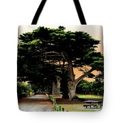 Fig Tree Lane Tote Bag