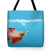 Fighting Fish Under Water Tote Bag